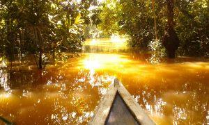 Navigando per il Rio delle Amazzoni
