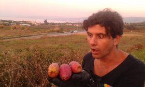 permacultura, ecologia, vivere sostenibile