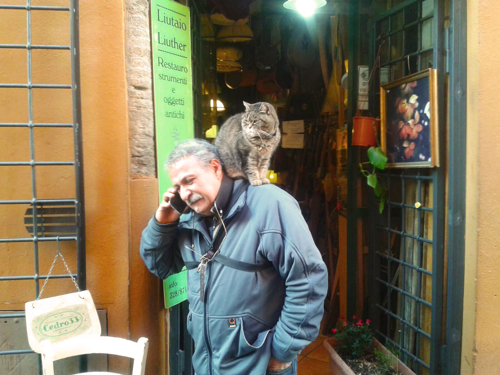 liutaio con gatto