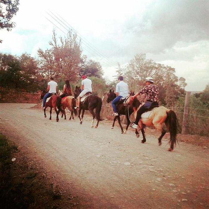 Foto dalla Colombia, sud America, cavalli a Villa de Leyva