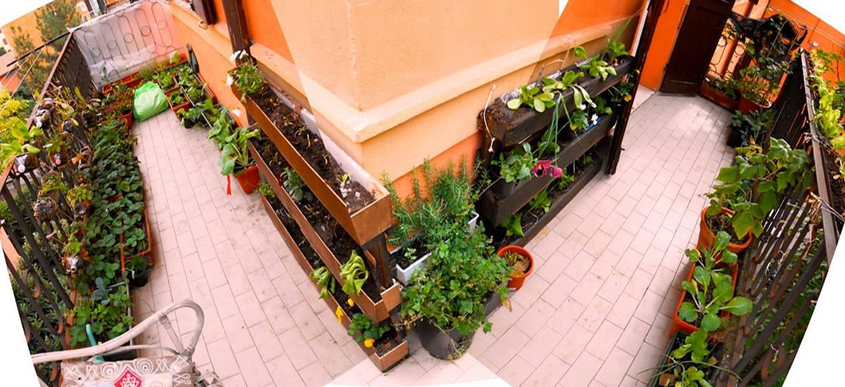 Orto sul balcone, orto verticale, permacultura