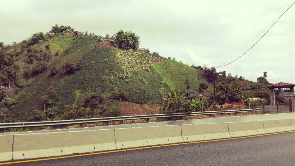 autostrada-del-caffe-manizales-pereira-colombia