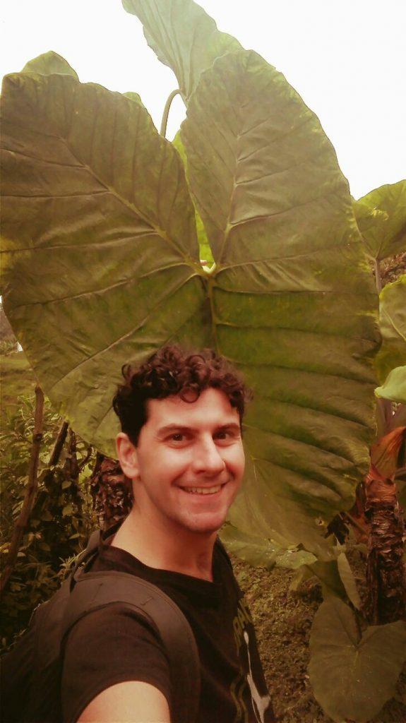 foglie-giganti-in-sud-america