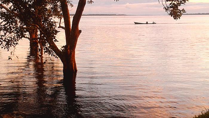 amazzonia colombia