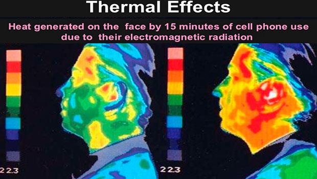 risultati test scientifici elettrosmog