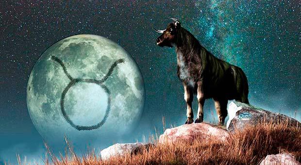 caratteristiche segno del toro
