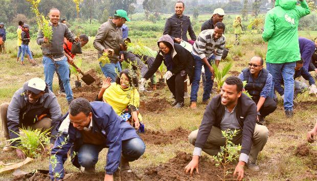 350 milioni di alberi Etiopia