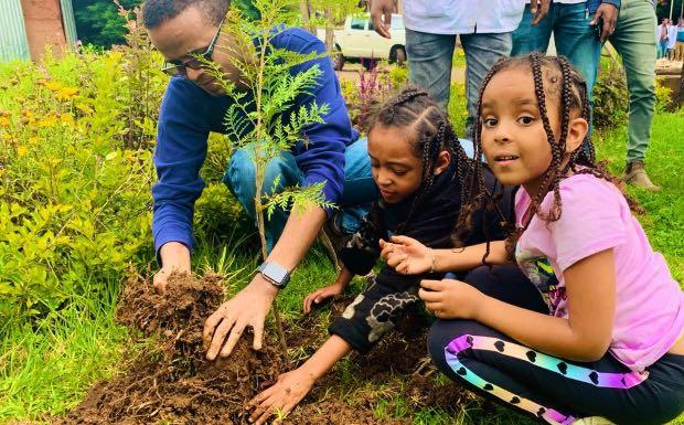 record mondiale alberi piantati
