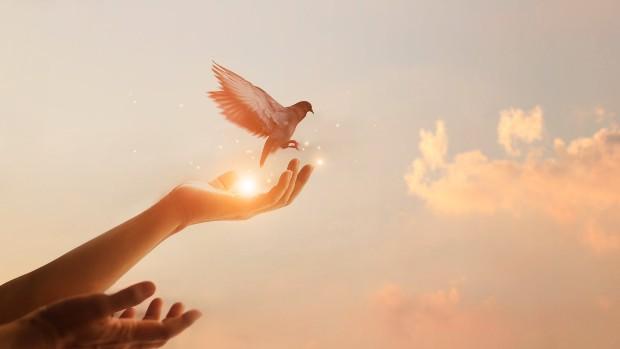 workshop di crescita personale e spiritualità