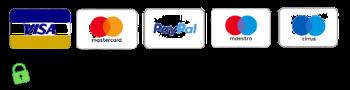 pagamento 100% sicuro garantito da paypal (1)